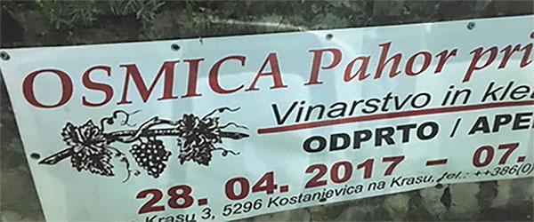 Osmica Wine Festival